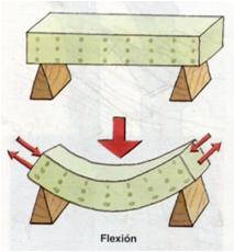 flexión 1