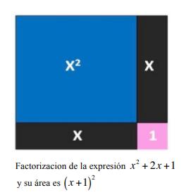 area 10